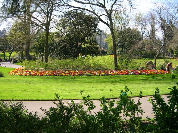 photo de Nantes : fleurs, jardin des plantes